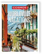 Cosmos travel blog